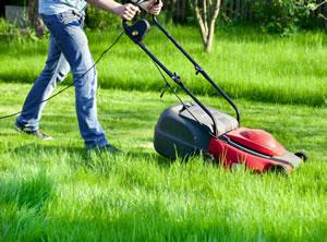 Gartengeräte: Rasenmäher