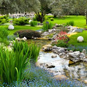 Gartenteich und Bachlauf