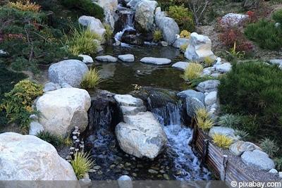 Wasser Bach