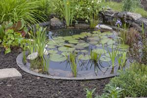 Gartenteich mit Teichbecken