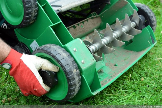 Rasen Richtig Vertikutieren Anleitung Ist Es Sinnvoll
