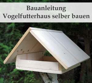 Vogelfutterhaus selbst bauen