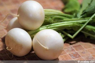 Rettich Gemüsesorten