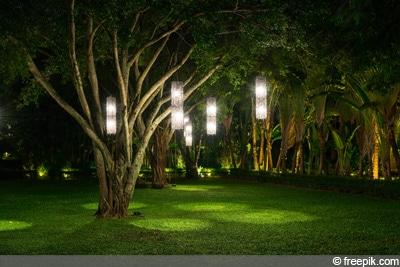 Lampen Baum