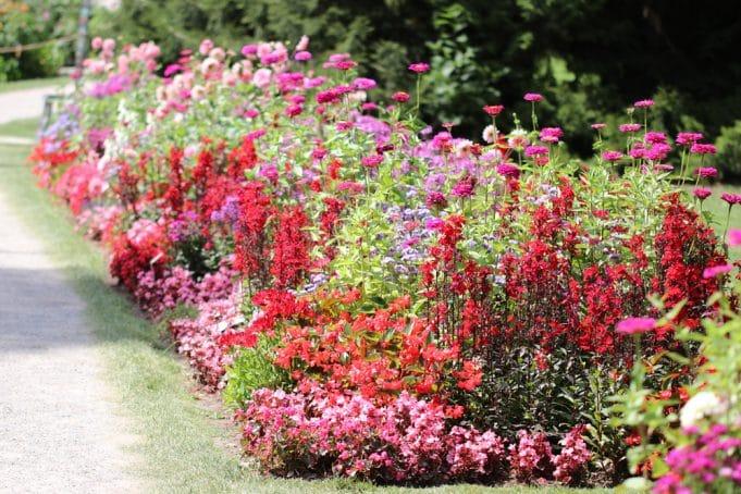 Berühmt Blumenbeet anlegen - Ideen zum gestalten - Gartendialog.de #KH_19