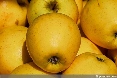 Golden Delicious alte Obstsorten
