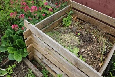 Rattenbekämpfung Kompost