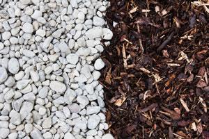 Richtig Mulchen Rasen Rosen Und Beete Gartendialogde