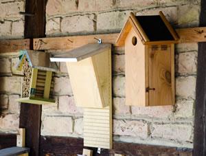 Insektenhotel und Nistkasten