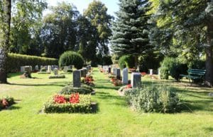 Grabbepflanzung Friedhof