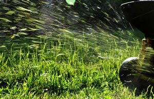 Rasenmähen - wann erlaubt?