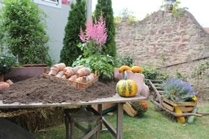 Pflanztisch im Herbst