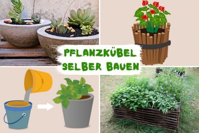 Pflanzkubel Selber Bauen Holz Beton Gartendialog De