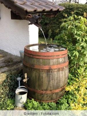 Wasserfass im Garten