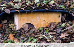 Igelhaus im Garten