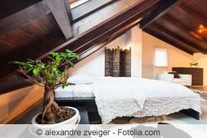 Pflanzen im Schlafzimmer - Tipps für die richtigen Zimmerpflanzen ...