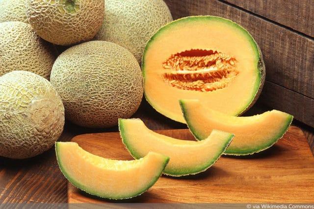 Zuckermelone