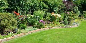Rasenkante im Garten