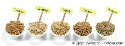 getreide korn