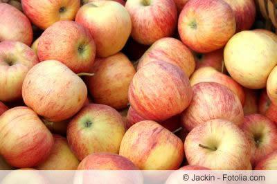 Ernte von Gala-Äpfeln