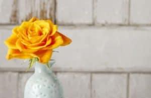 Gelbe Rose in der Vase