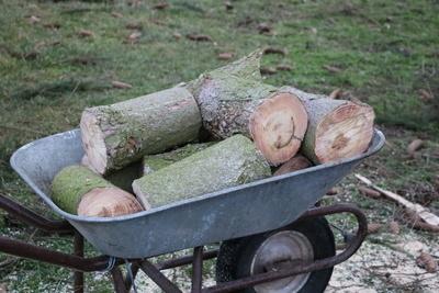 Holz zum Abtransport bereit