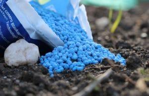 Blaukorn - Stickstoffdünger