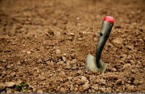 ph-Wert senken Boden sauer machen