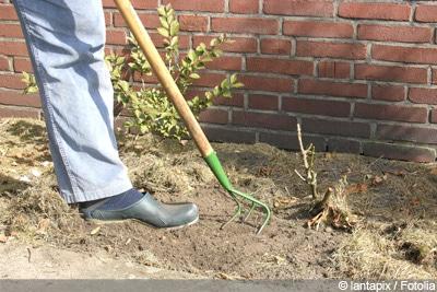 verdichteten Boden auflockern - Grubber