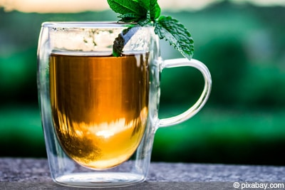 Tierchen Blumenerde bekämpfen - Tee
