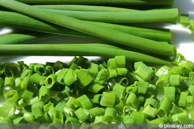 Schnittlauch Allium Schoenoprasum in Haus und Wohnung ziehen