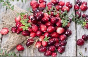 Cranberries roh essen