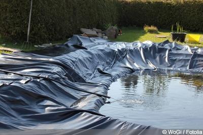 Teich reinigen