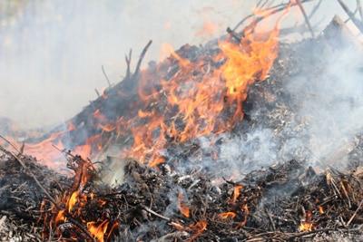 Gartenabfälle verbrennen, Feuer