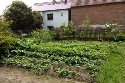 Garten anlegen