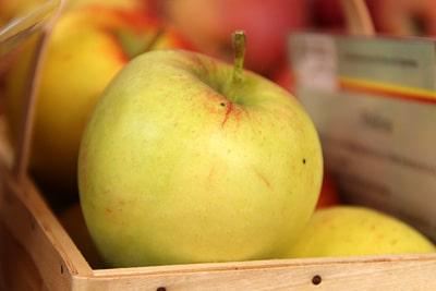 Apfelsorten Retina