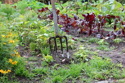 Gartenjahr
