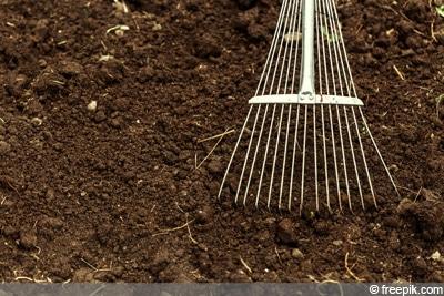 Rasen vorbereiten