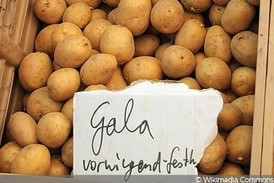Kartoffel Gala