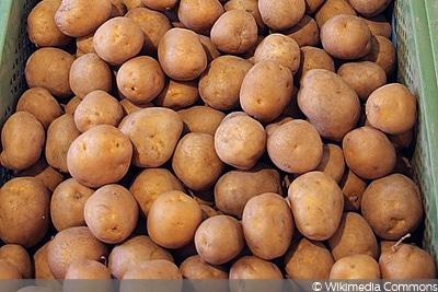 Kartoffel Karlena
