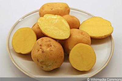 Kartoffel Marabel