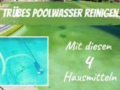 Poolwasser reinigen