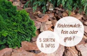 Rindenmulch-Sorten