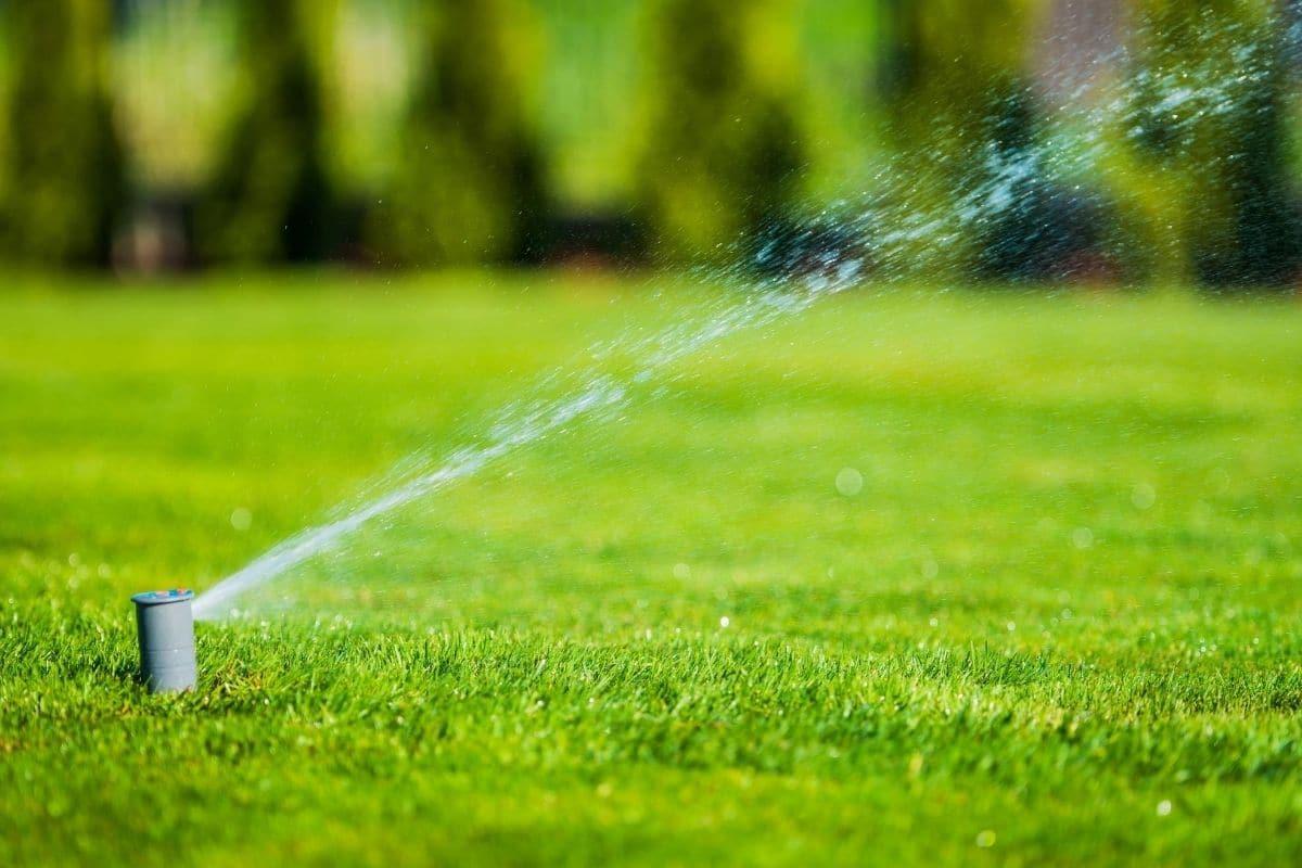 Rasensprenger, Wasserverbrauch ermitteln