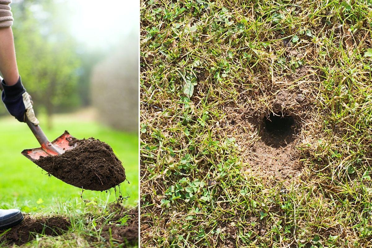 Rasen Loch füllen