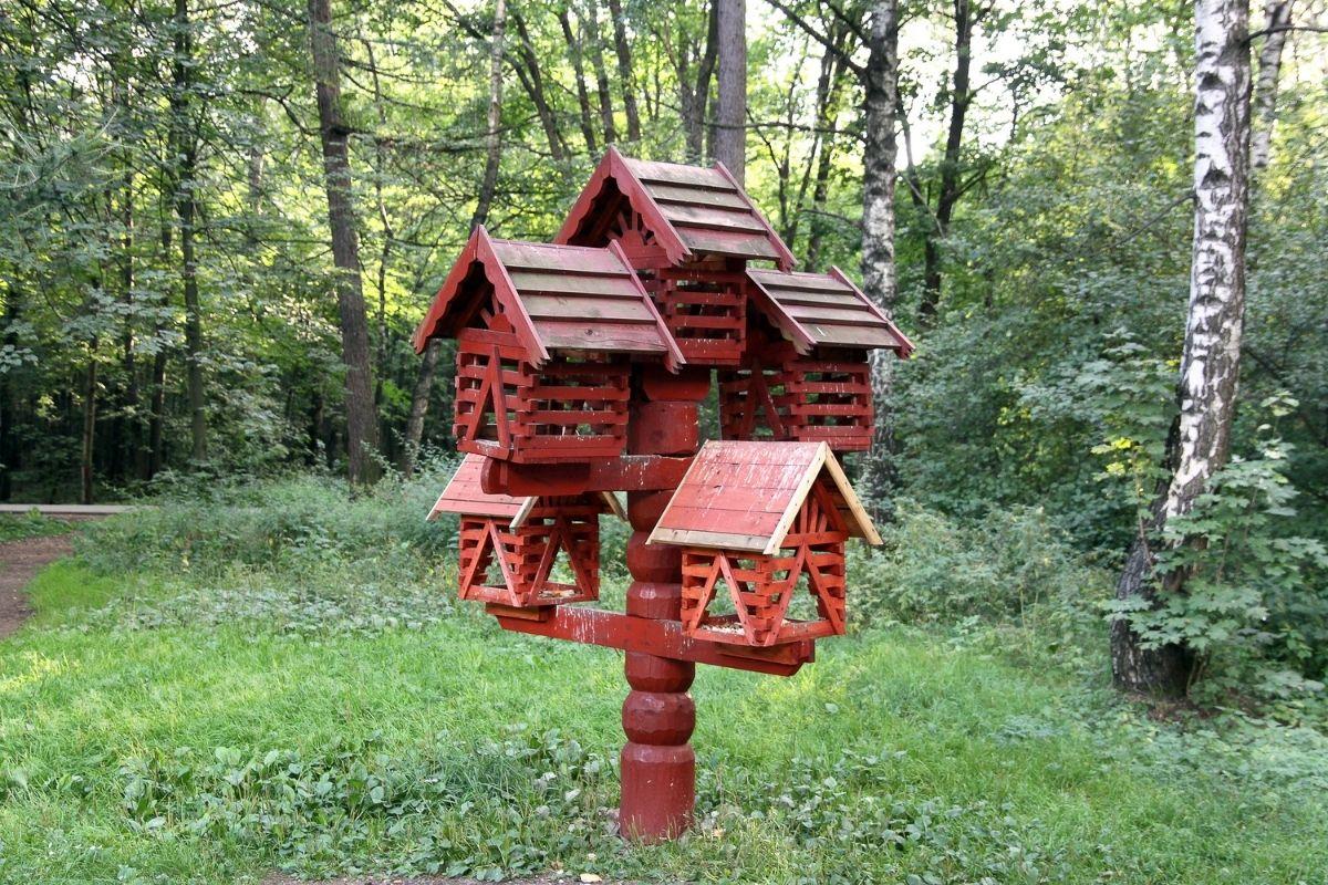 Vogelhaus Vogelfutter
