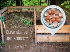 Eierschalen auf dem Kompost