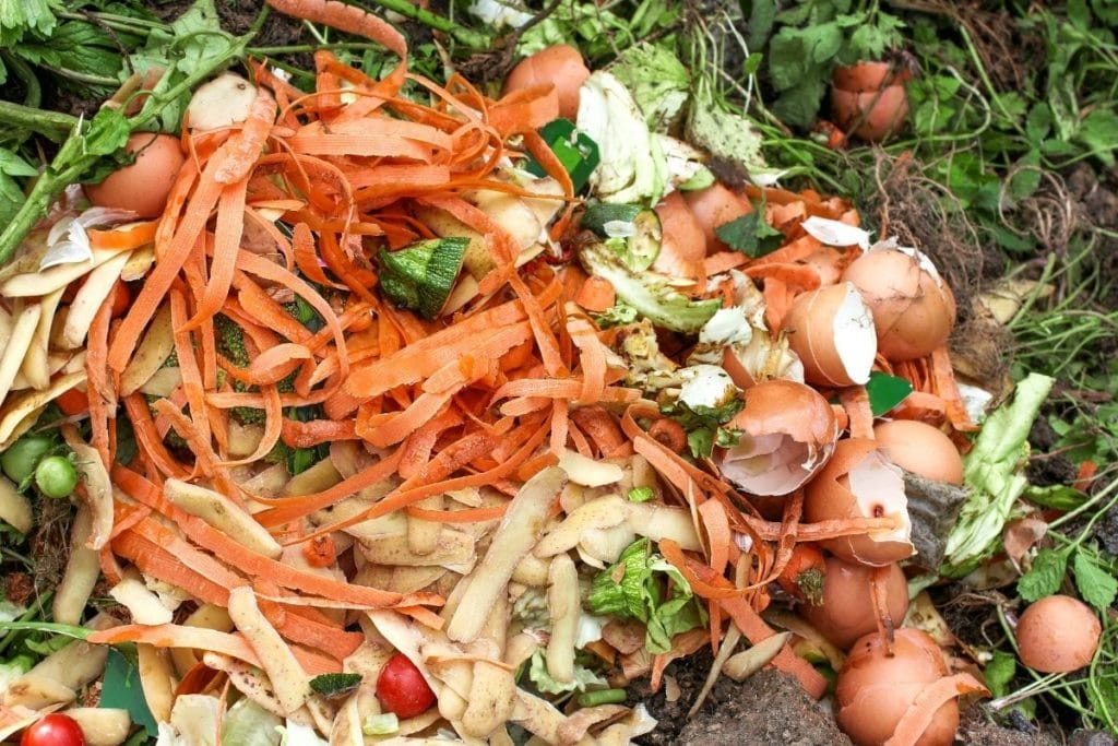Komposthaufen, Biomüll