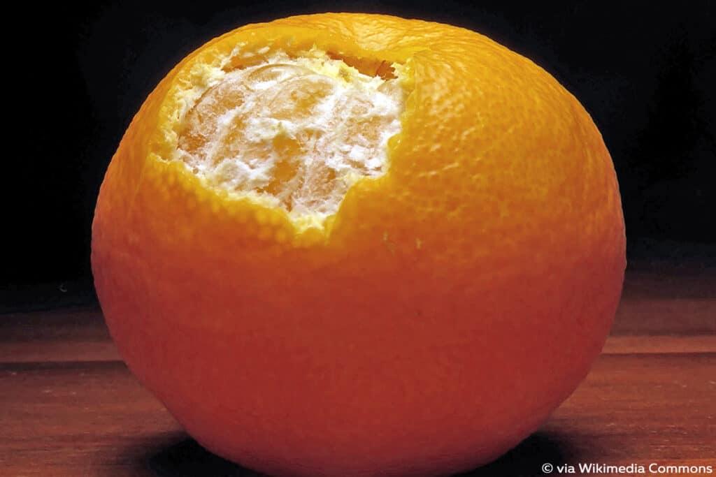 Clementinen (Citrus × clementina)