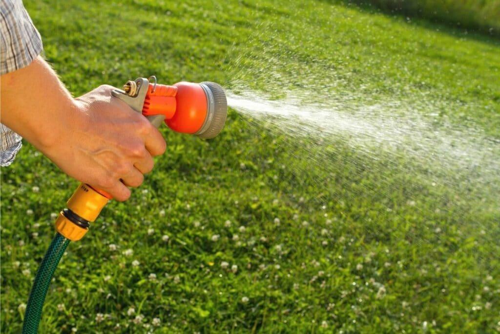 Trockenen Rasen wässern